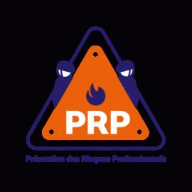 Prévention-des-Risques-Professionnels-579x579